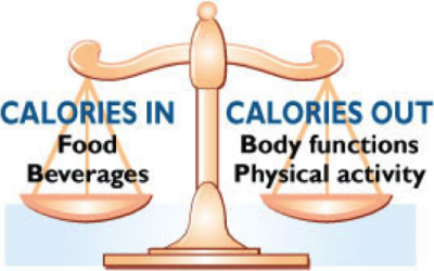FOOD IS AWESOME: Use Calories to Fuel your Body